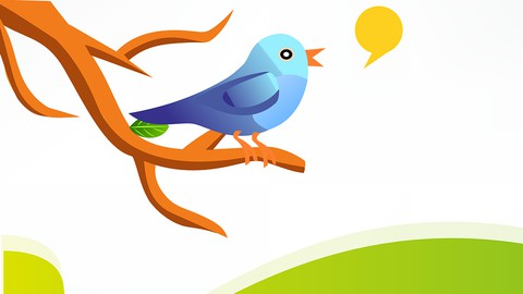 How to Tweet for Beginners