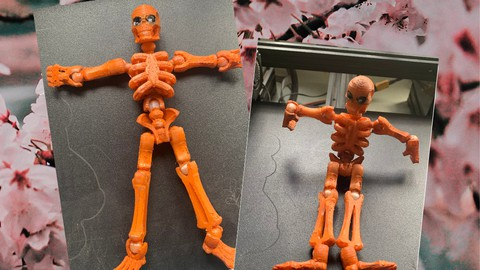 A Beginner's Guide to 3D Printing Eco-friendly Toys