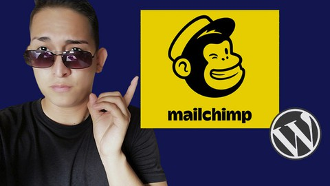 Como enviar Correos Masivos con MailChimp y WordPress