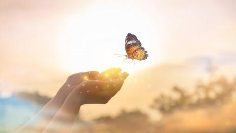 Canlı Kitap Deneyimi - Bir Aile Travmasının İyileştirilmesi