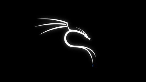 Sıfırdan İleri Seviye Kali-Linux Eğitimi