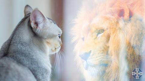 Self Confidence & Self Esteem, Mindfulness Makeover