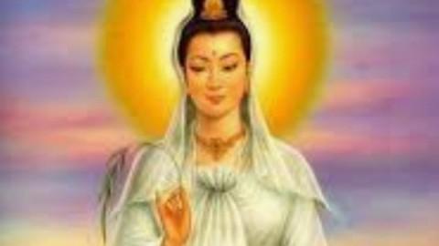 Manto Dourado de Kuan Yin