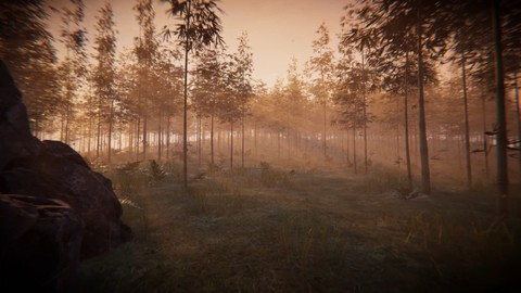 Create A Realistic Environment for your Game using Unity