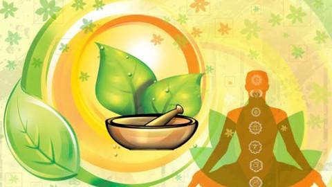 Ayurveda for Balanced Lifestyle - Master Course