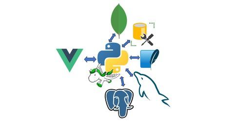 Vue JS and Python Django Full Stack Web Development Course