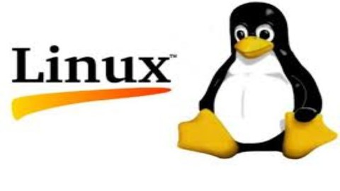 Linux Basics Part 2