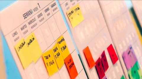 Last Planner System®