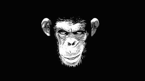Guerrilla Hiring - Don't Hire Monkeys to Run your Company