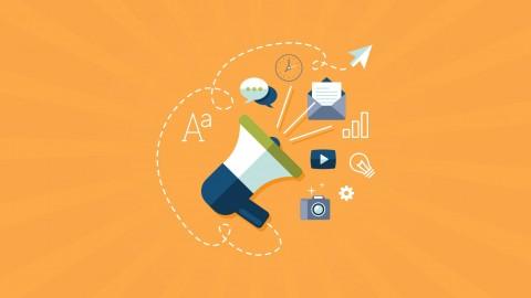 Digital Marketing Campaign: Plan a Professional Strategy