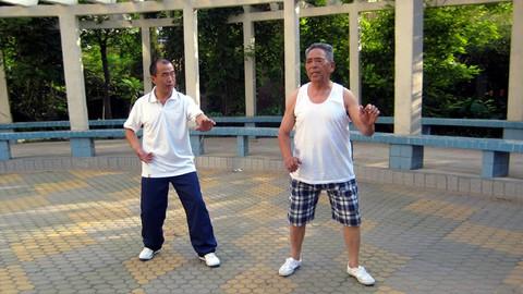 仁和太极内功静桩 3.虚步桩 Tai Chi Internal Skill -Fighting Stance
