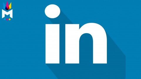 LinkedIn Business Marketing: Professional Profiles & Company Pages