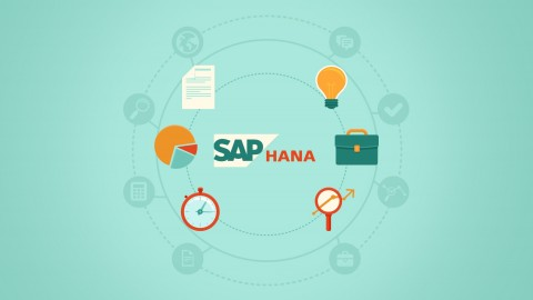 SAP HANA Installation, Operation and Administration