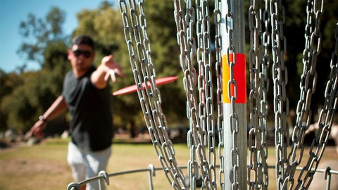 The Disc Golf Course: The complete course for beginners