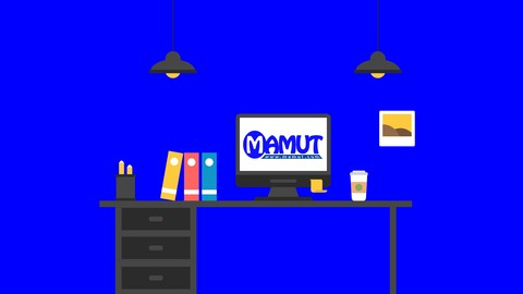 Mamut Accounting software