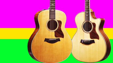 Beginner Guitar Lessons - Learn EASY SONGS on the Guitar