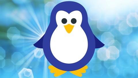 Shell Scripting , Bash Scripting , AWK & SED on Linux , Unix