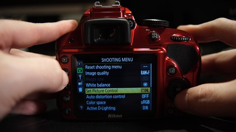 The Unofficial Guide to the Nikon D3200 & D3300