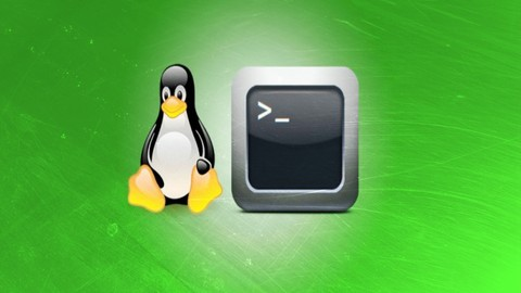Learn Bash Shell in Linux for Beginners