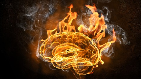 Limitless: How Nootropics Can Enhance Your Brain Function
