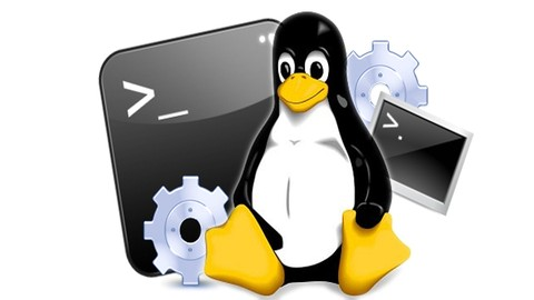 Curso de Linux: Comandos do Terminal