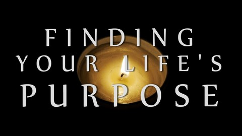 """Purpose Search """"The Future is what you do Today"""""""