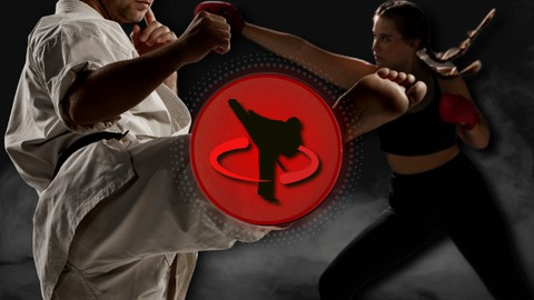 Martial Arts Workout Routines   Home Training & Fitness