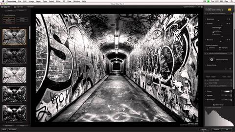 Nik Collection Suite : Silver Efex Pro II
