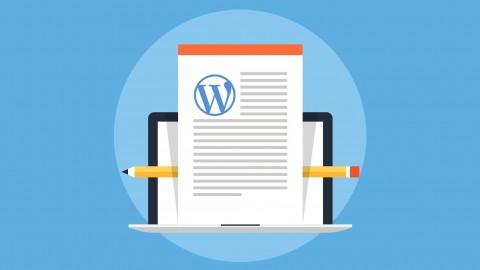 Wie man eine Homepage oder einen Blog mit WordPress erstellt