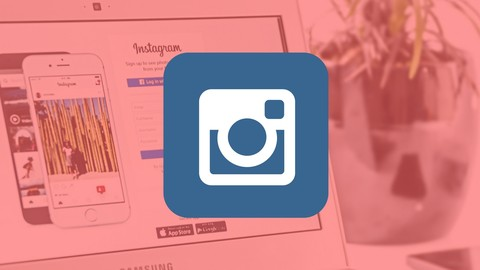 Instagram Marketing Crash Course for Entrepreneurs