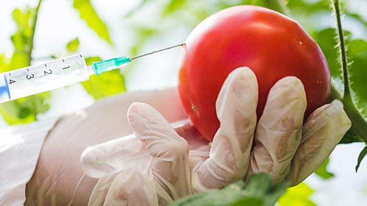 Plan de Defensa Alimentaria